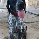 Max – Reserved