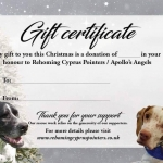 Gift Certificate – £5.00