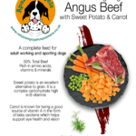Grain Free Angus Beef with Sweet Potato and Carrot