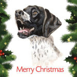Christmas Cards – Black & White Pointer (Pack of 10)